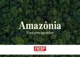 Fiesp divulga estudo sobre a Amazônia